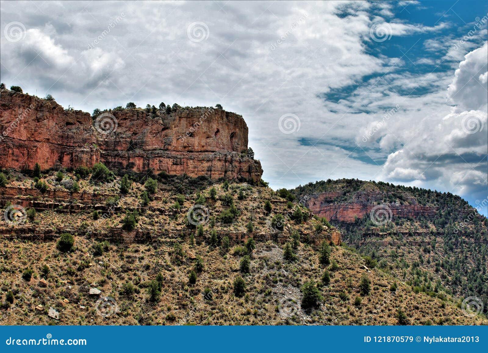 Район дикой природы каньона Salt River, национальный лес Tonto, Gila County, Аризона, Соединенные Штаты