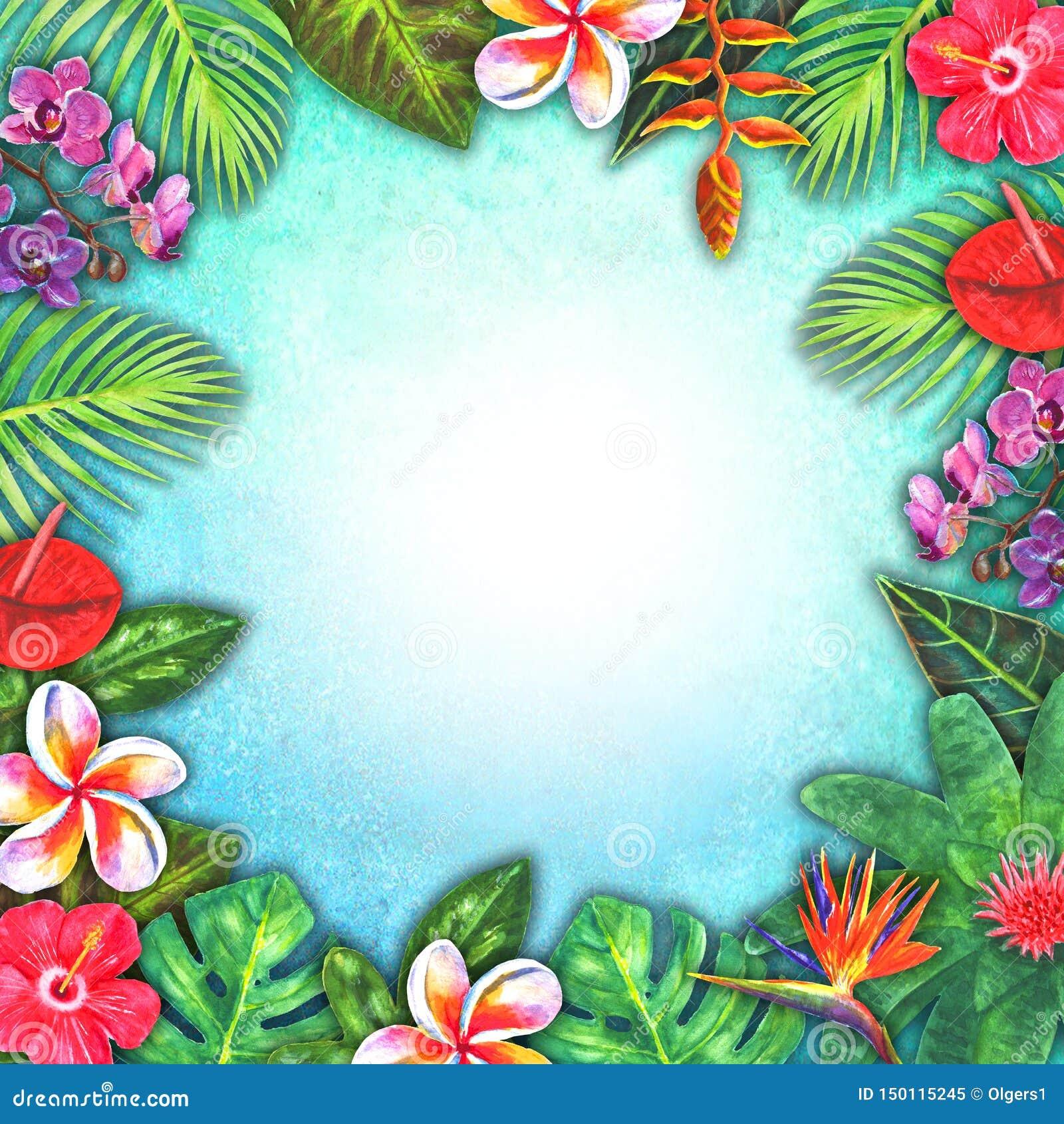 Рай абстрактной акварели лета тропический Заводы вычерченной красочной бумаги руки тропические