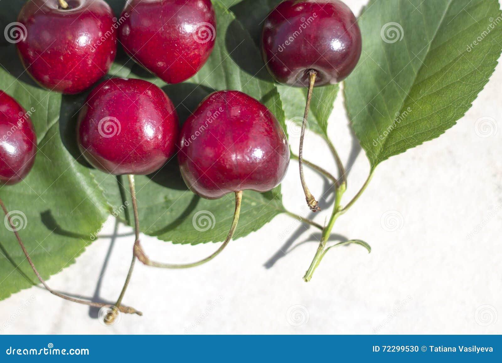 Download Рамка с зрелыми вишнями и листьями зеленого цвета Стоковое Фото - изображение насчитывающей группа, ягод: 72299530