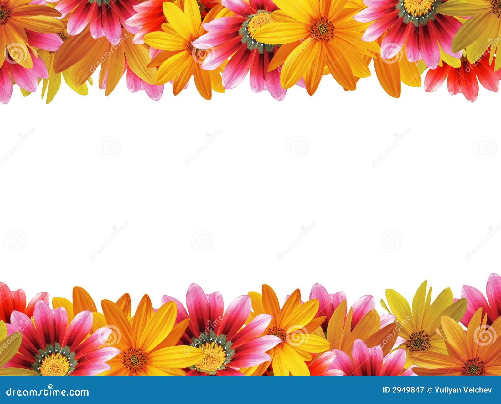 рамка 2 цветков
