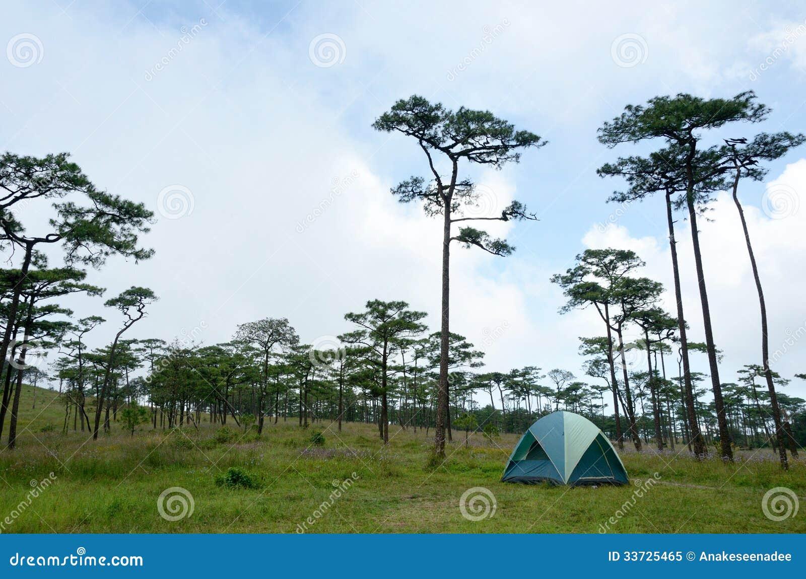Располагаться лагерем