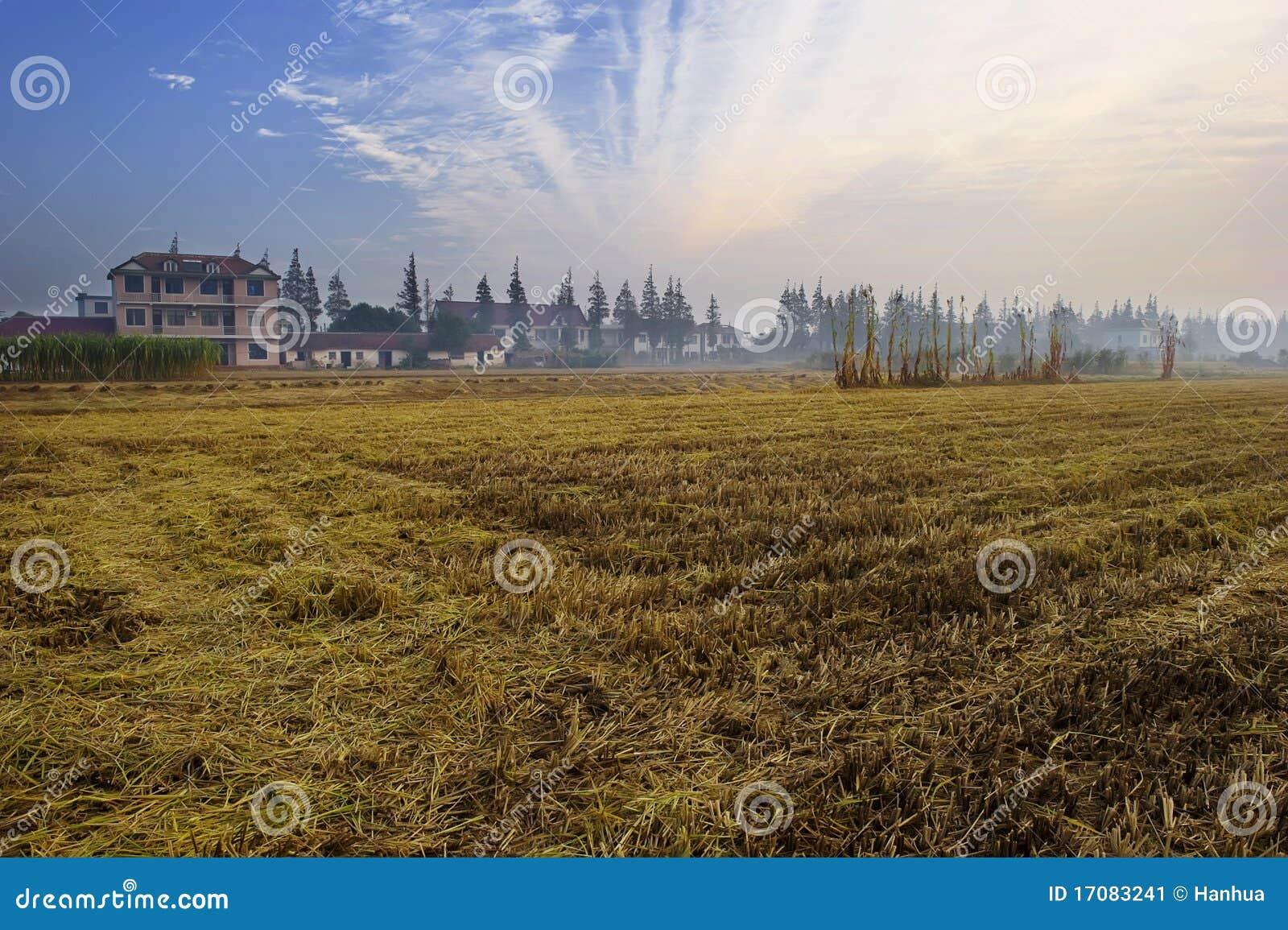 рассвет сельской местности
