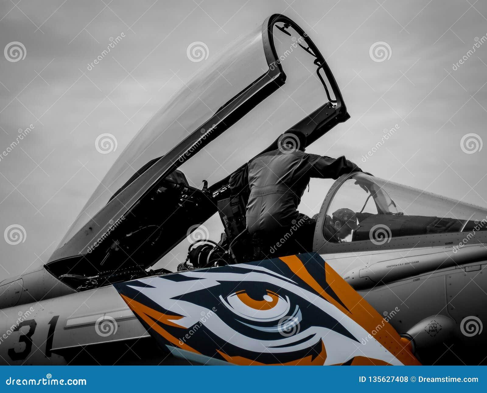 Реактивный истребитель тайфуна Eurofighter с ливреей тигра