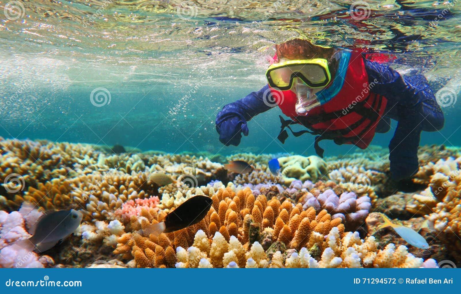 Ребенок snorkeling в большом барьерном рифе Квинсленде Австралии