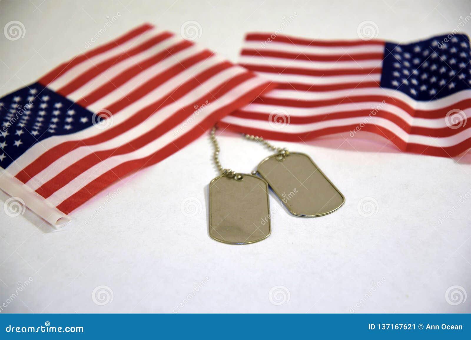 Регистрационные номера собаки и американские флаги на белой предпосылке