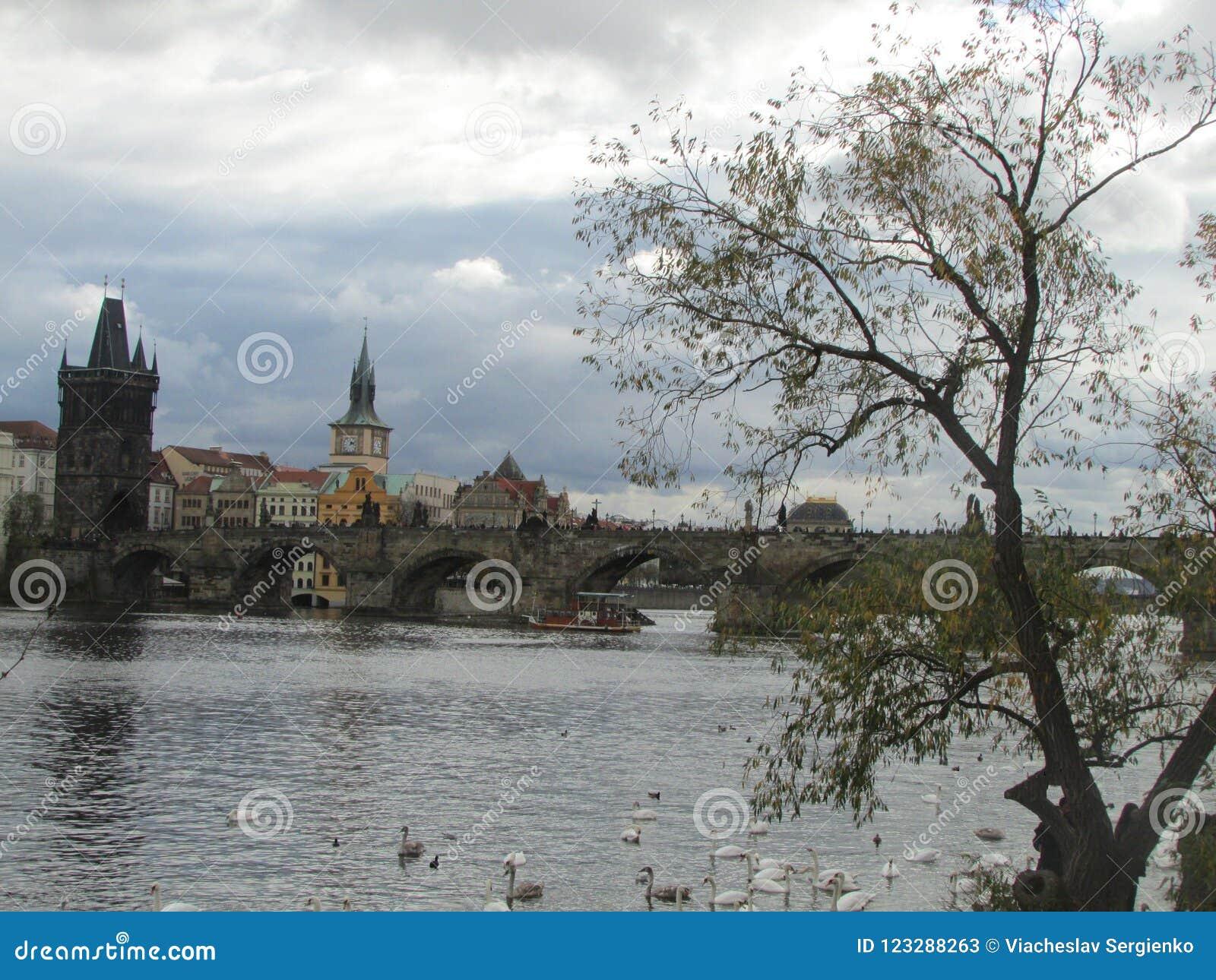 Река Влтавы и средневековый Карлов мост с башнями и статуями, Прагой, чехией