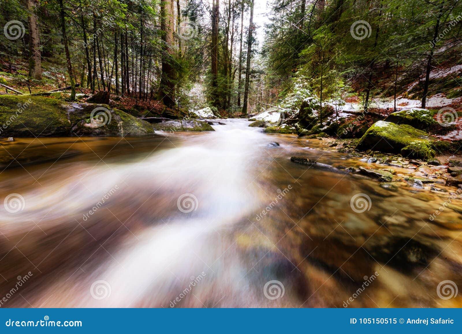 Река горы, поток, заводь с речными порогами в последней осени, предыдущей зиме с снегом, vintgar ущелье, Словения