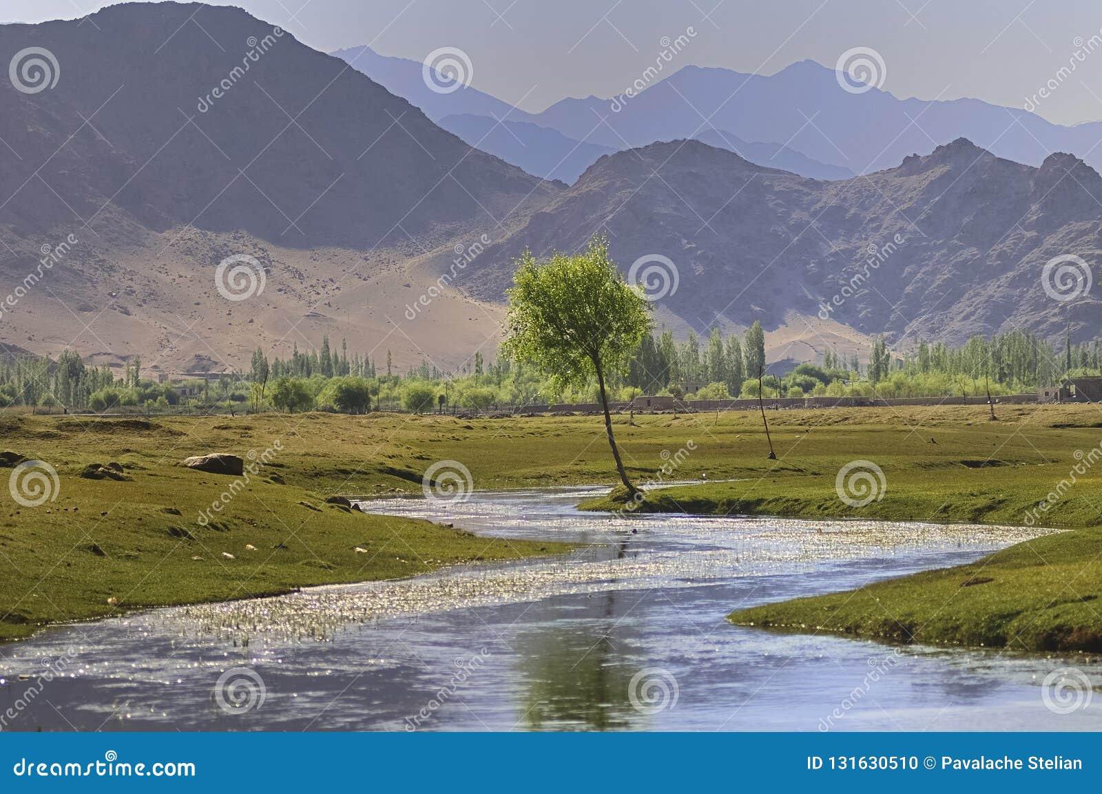 Река Инд пропуская через равнины в Ladakh, Индии,