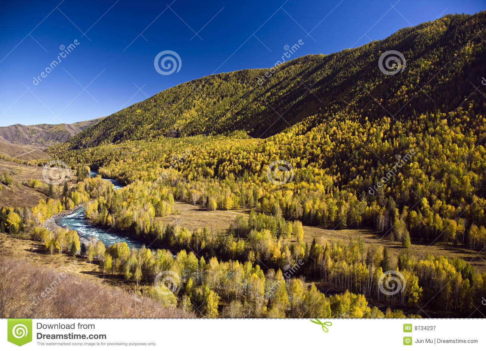 река пущи