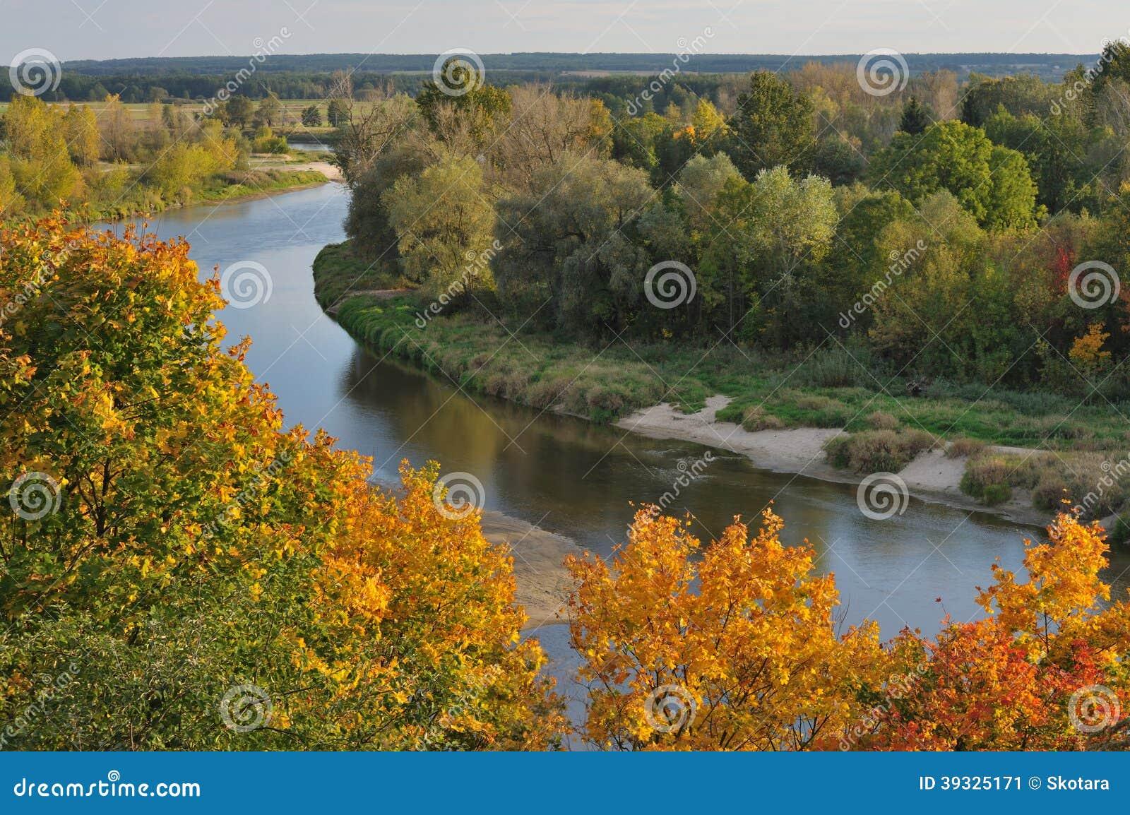 Река черепашки в осени