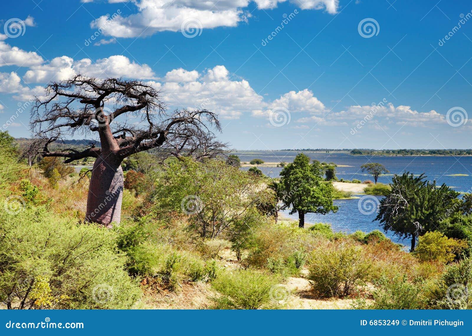 река chobe Ботсваны