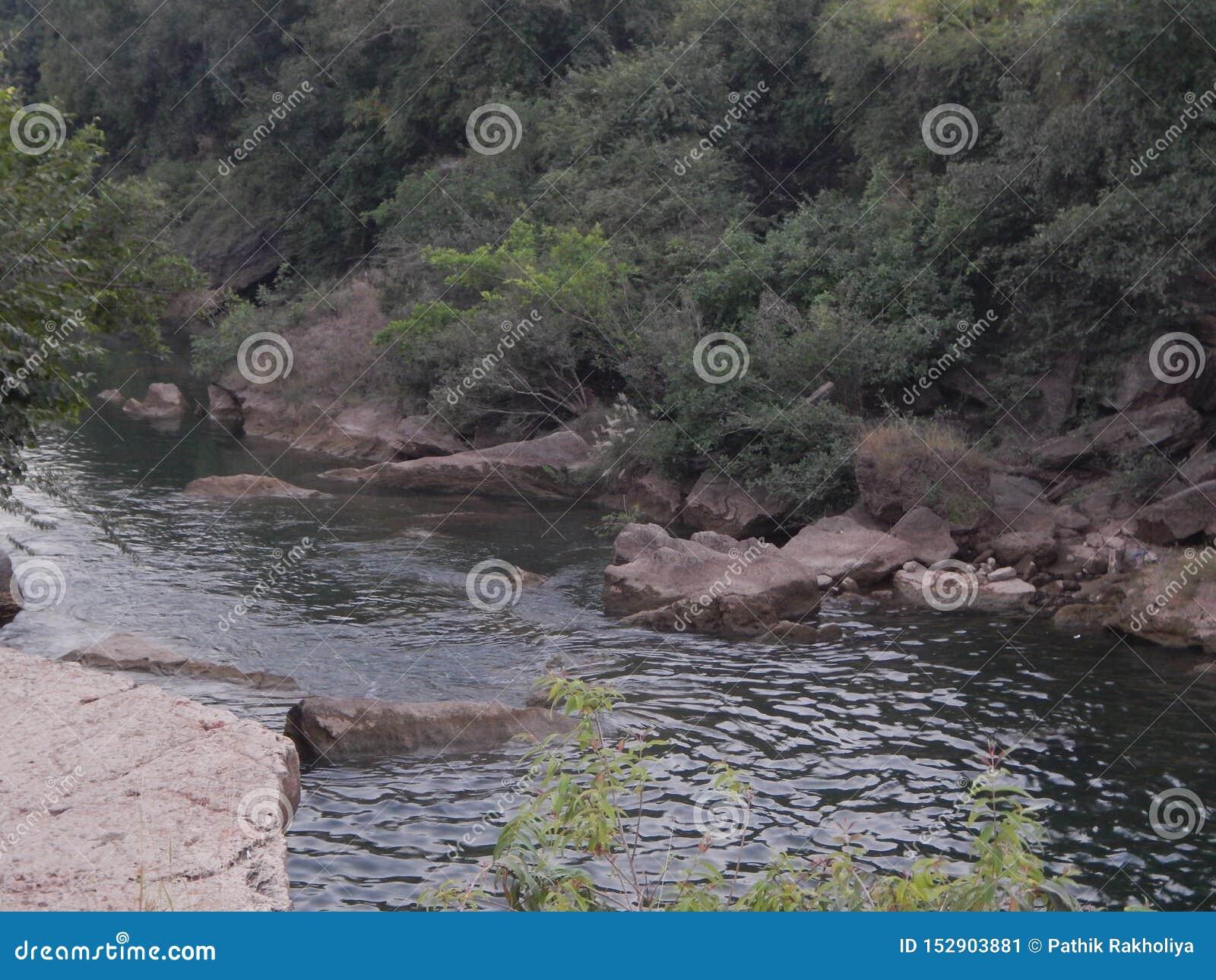 Река Jamjir в JAMWALA GIR