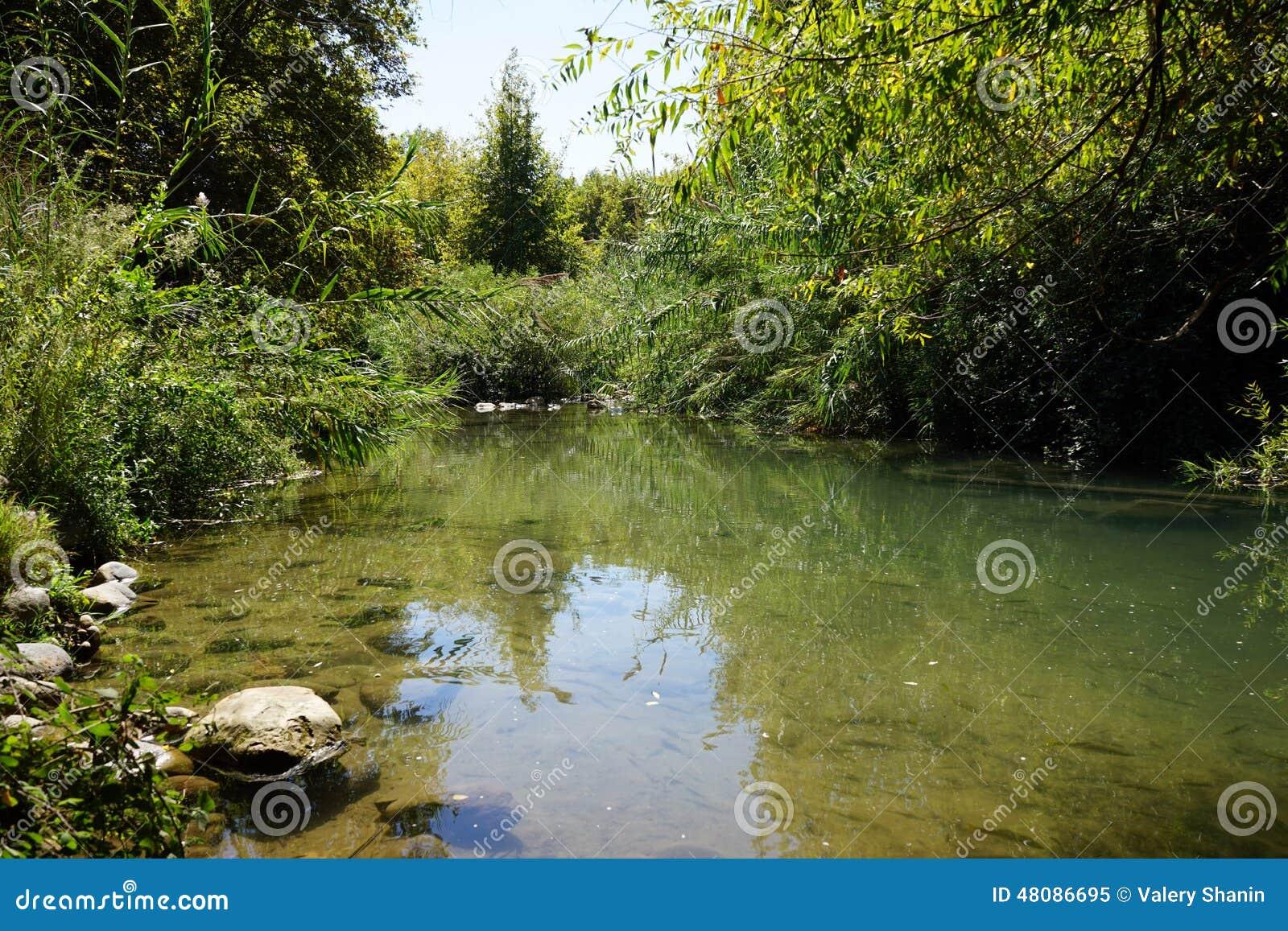 Река Senir