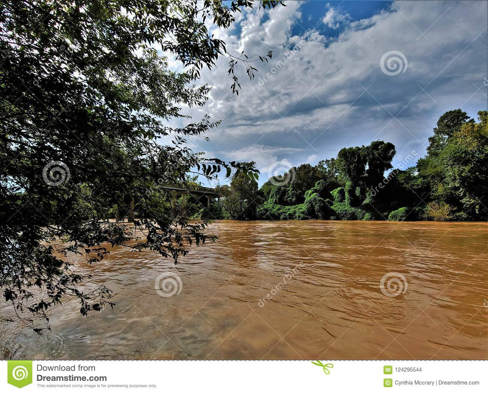 Река Yadkin около Уинстон-Сейлем, Северной Каролины