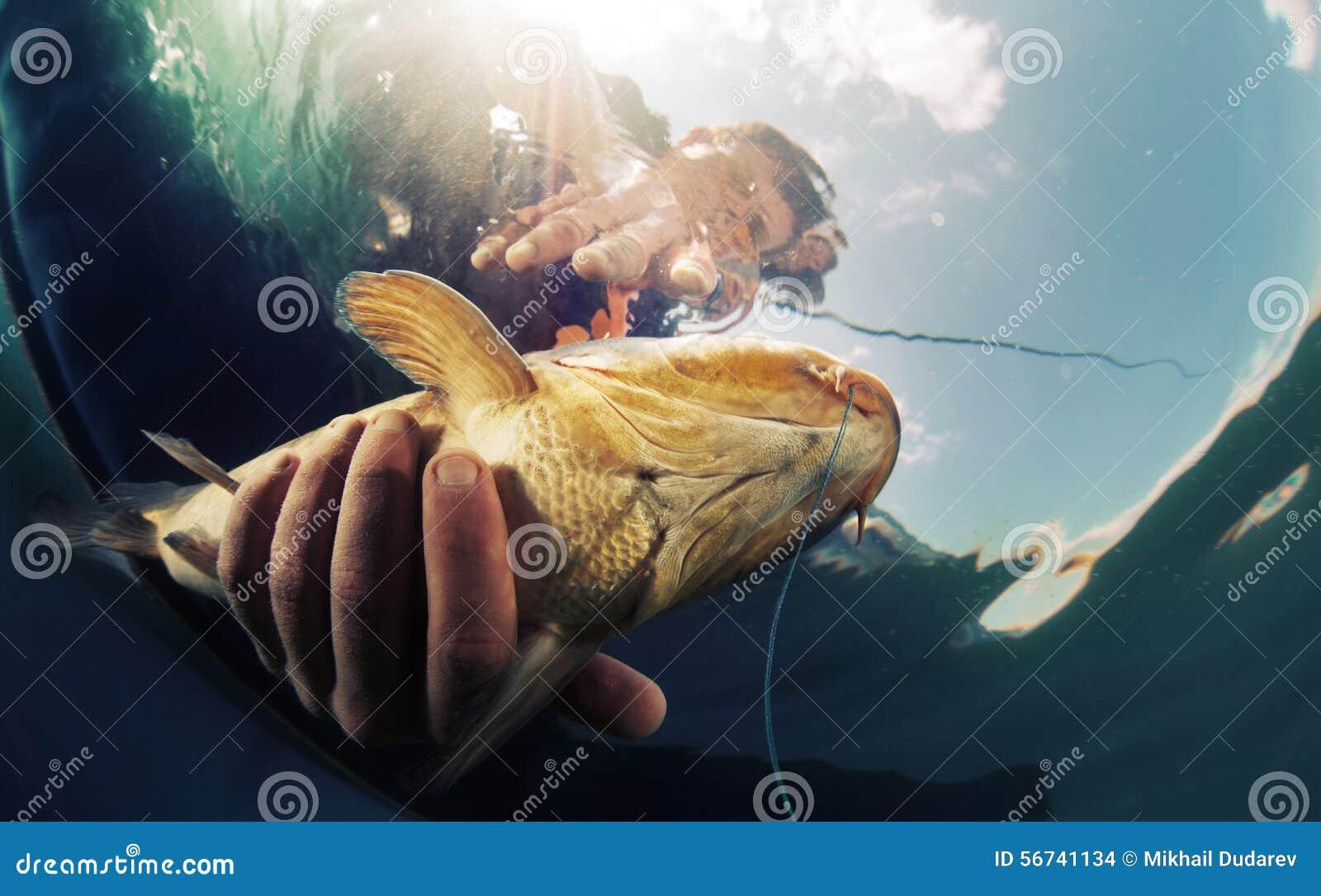 видеть как кто-то поймал рыбу сонник
