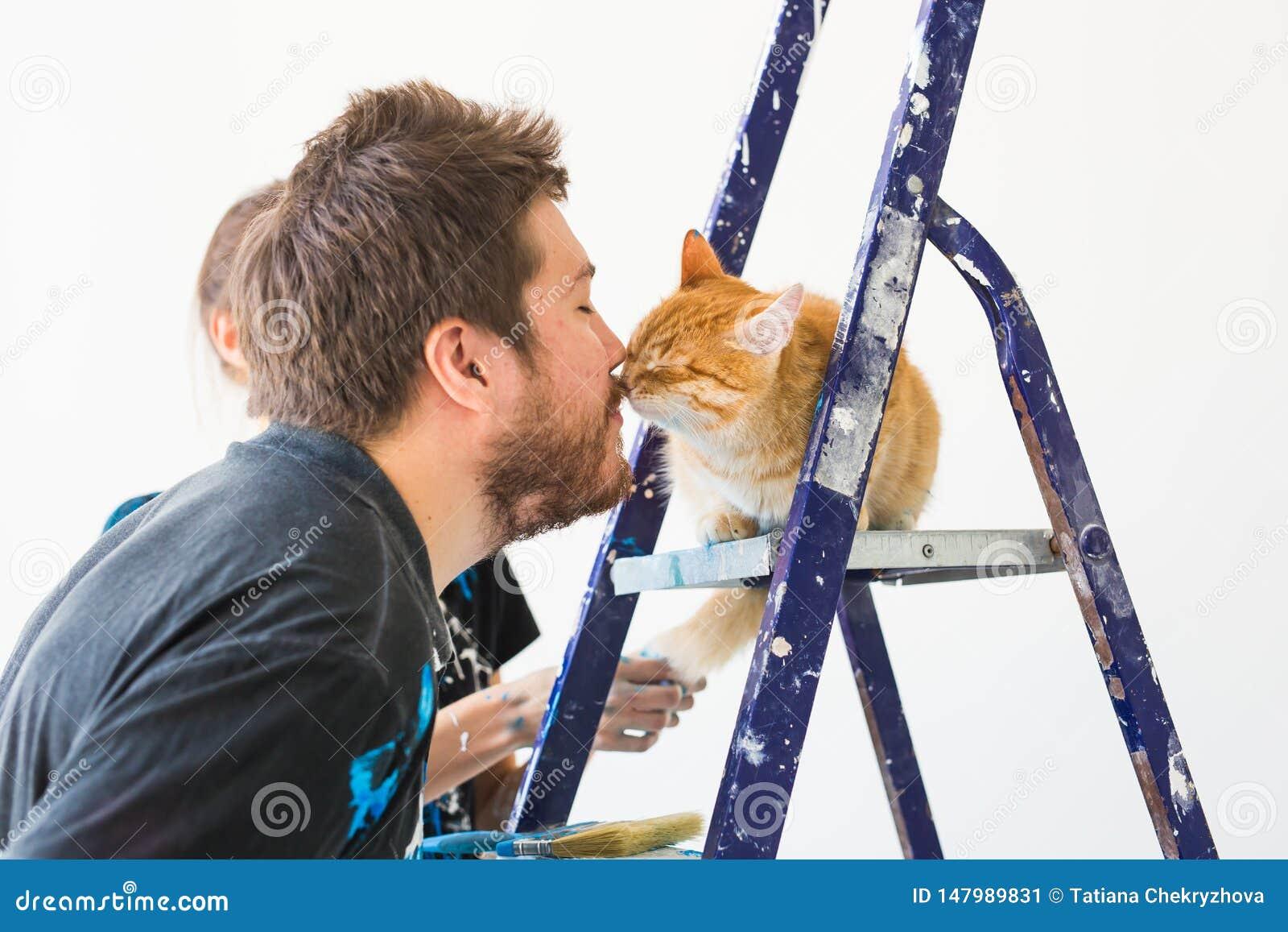 Ремонт, реновация, любимец и концепция пар любов - молодой человек с котом делая ремонт и крася стены