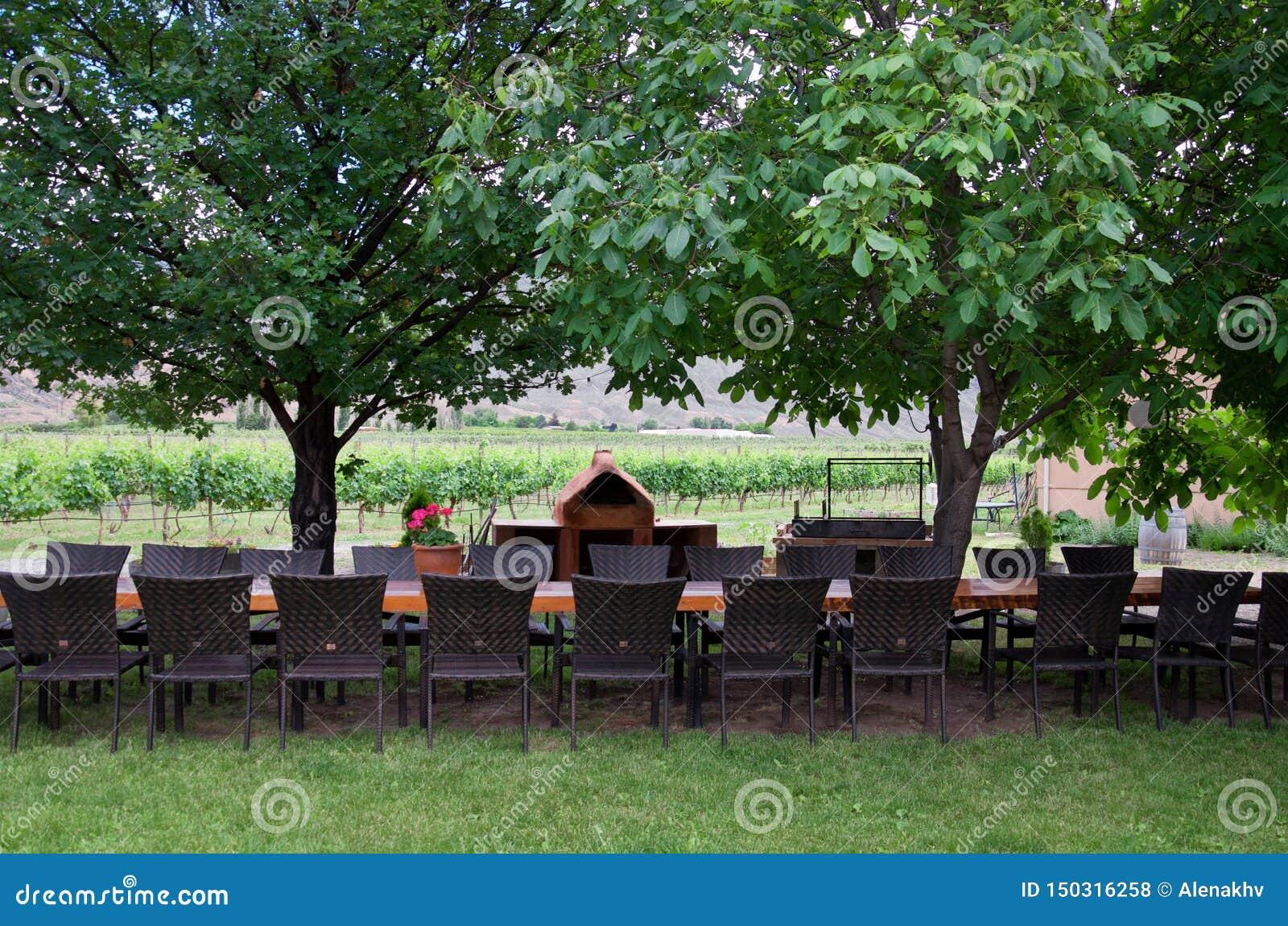 Ресторан в винодельне летом