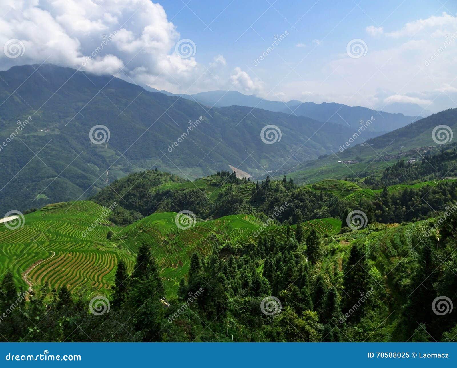 Рисовые поля террасы Longji в провинции Guangxi в Китае