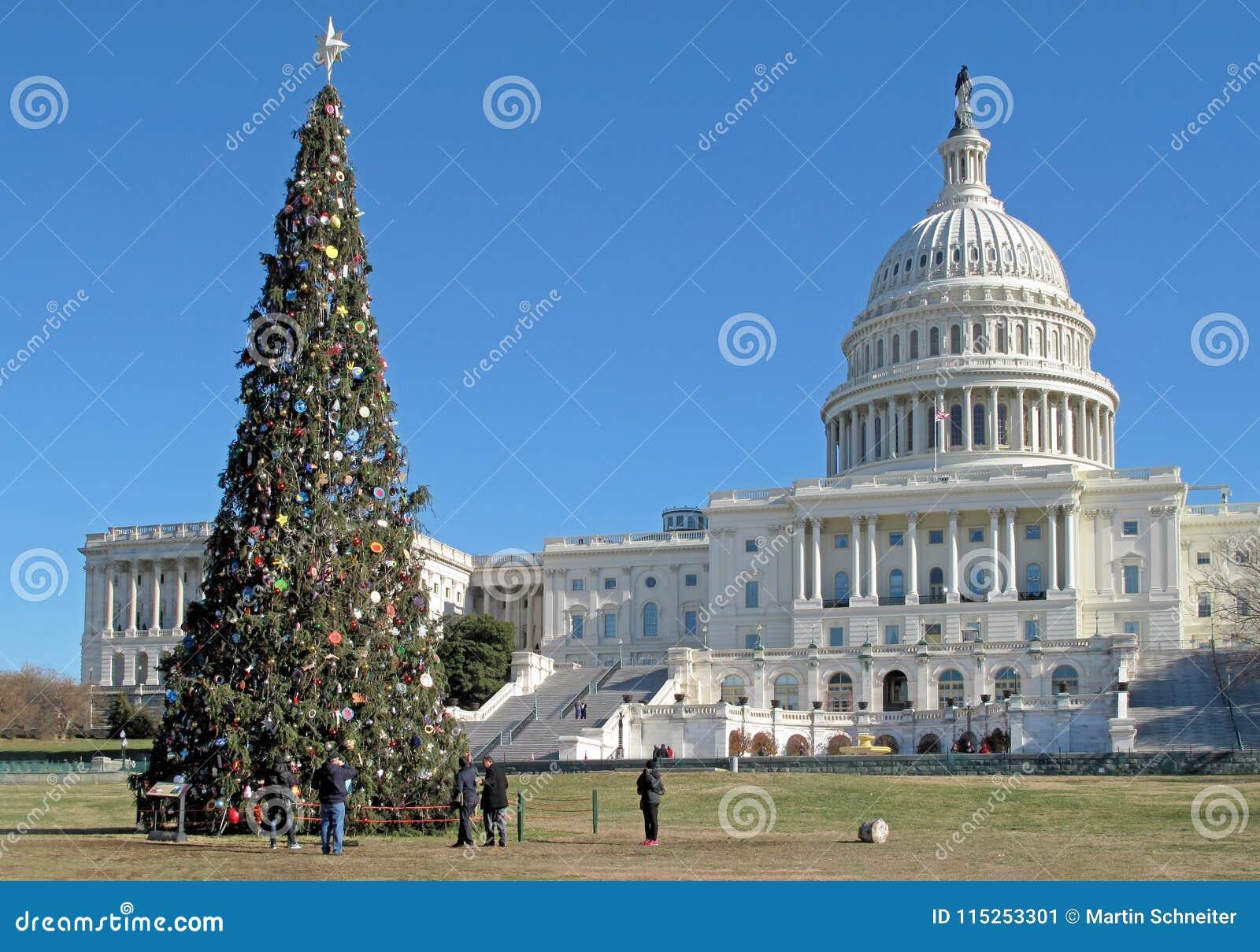 Рождественская елка перед зданием капитолия Соединенных Штатов в DC Вашингтона, США