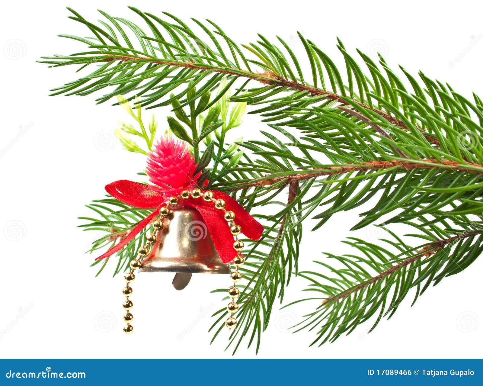 рождество bluebell