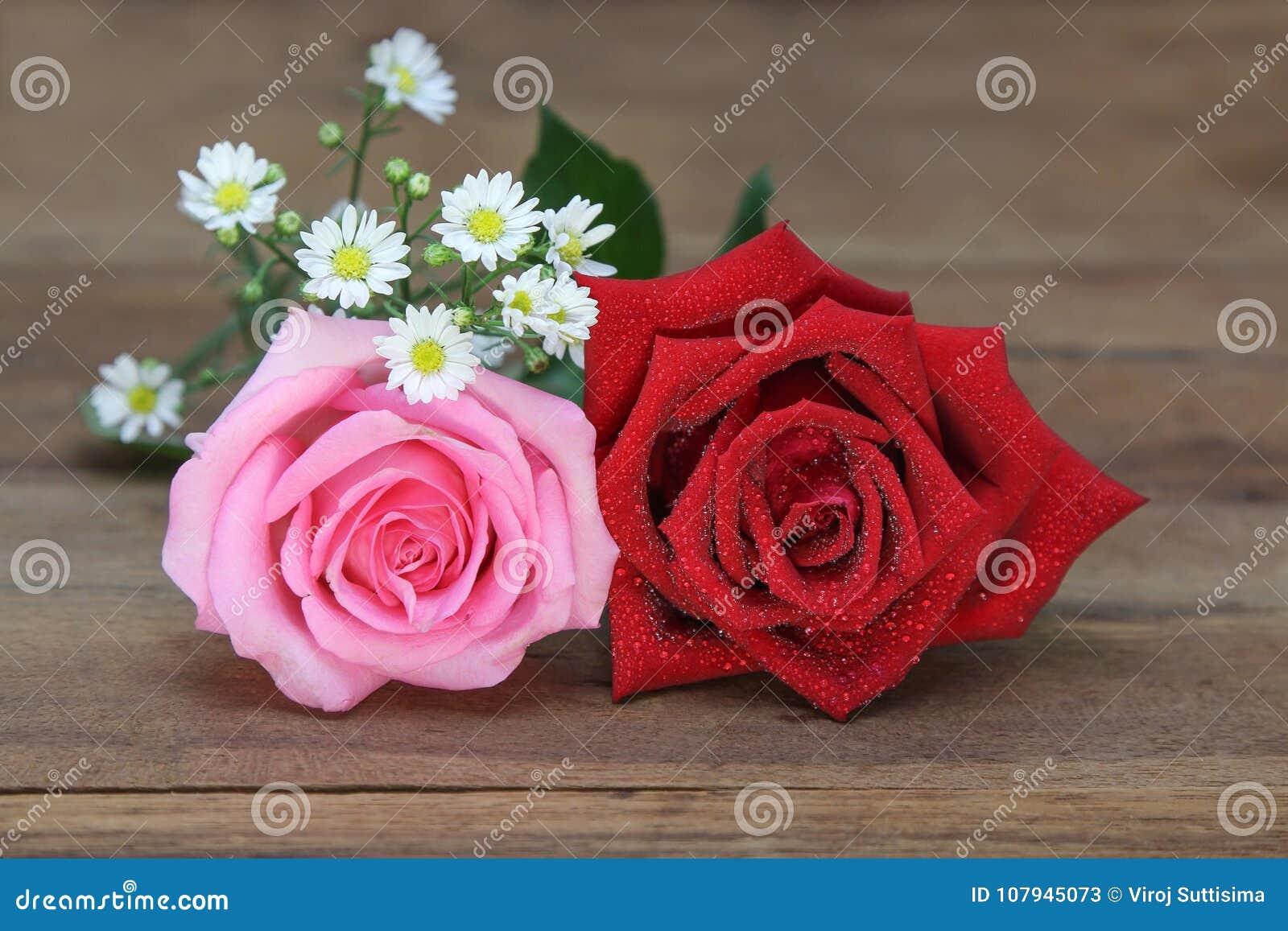 Роза красного цвета и пинка с водой падает на деревянную предпосылку
