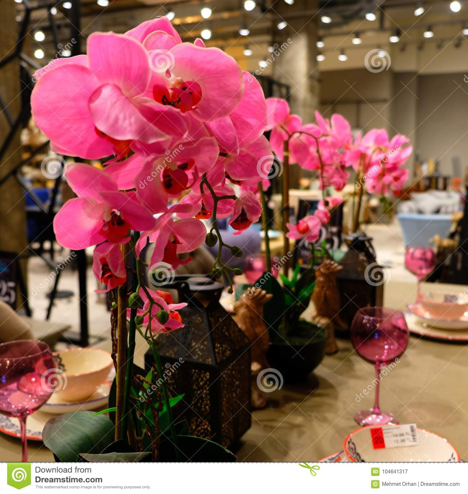 Розовая орхидея, декоративные света, розовый кубок, таблица старого стиля декоративная