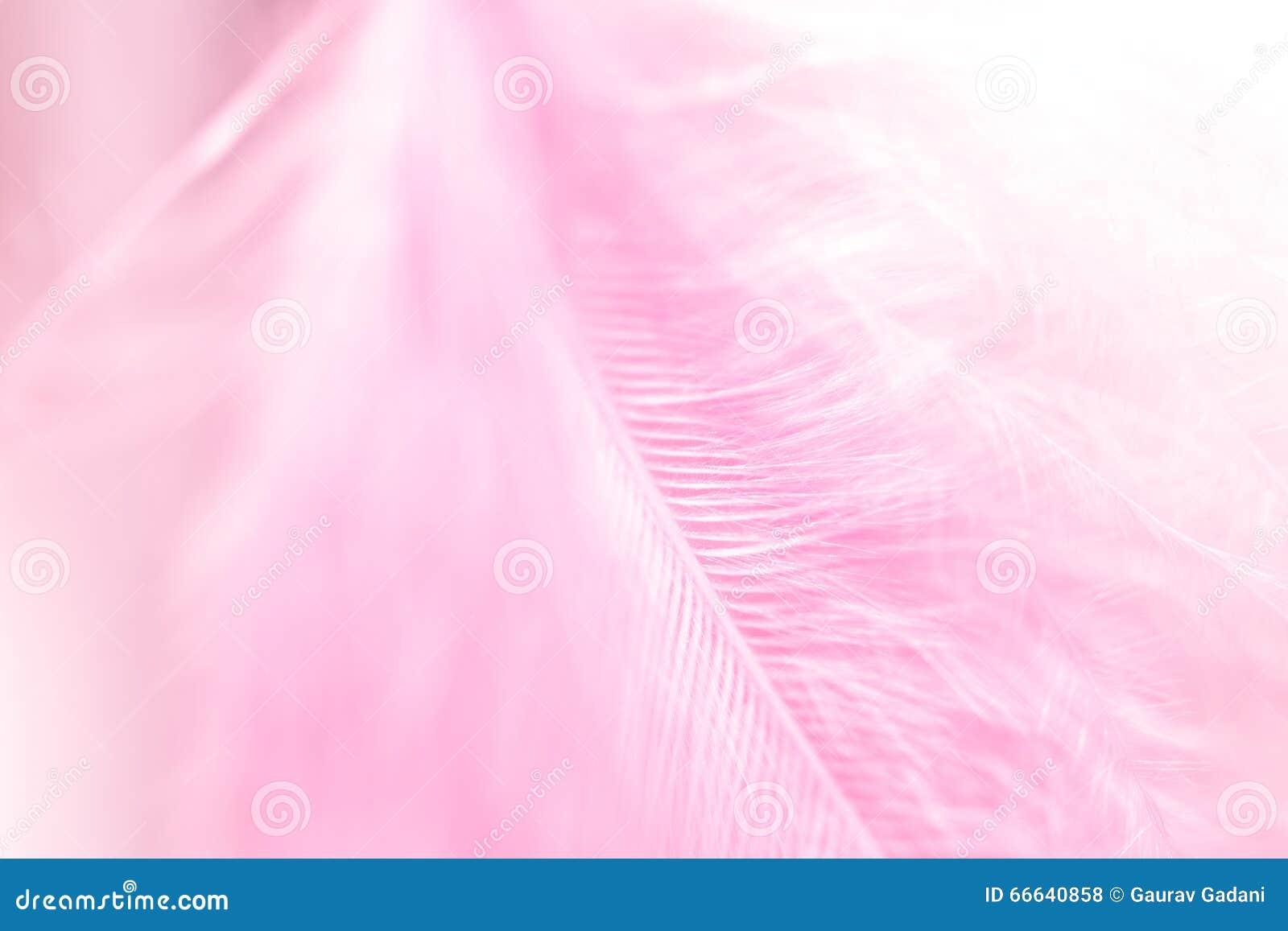 Розовое перо