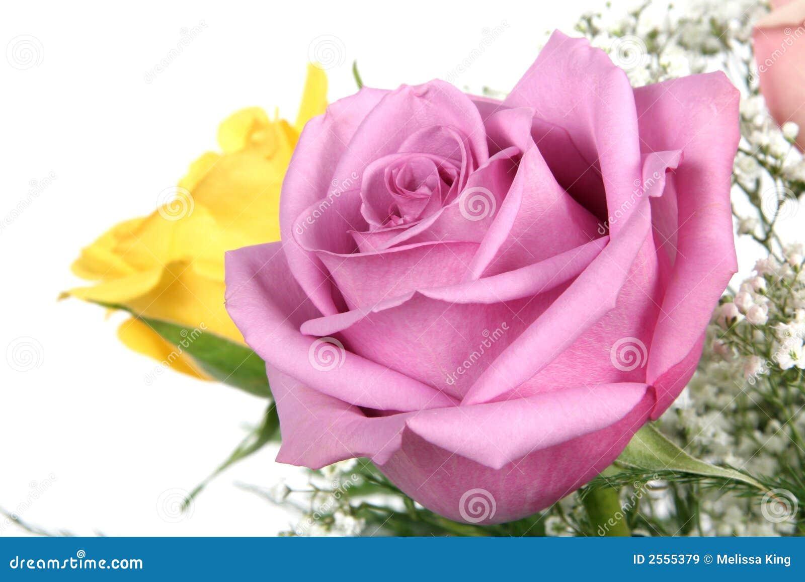 Розовые и желтые розы