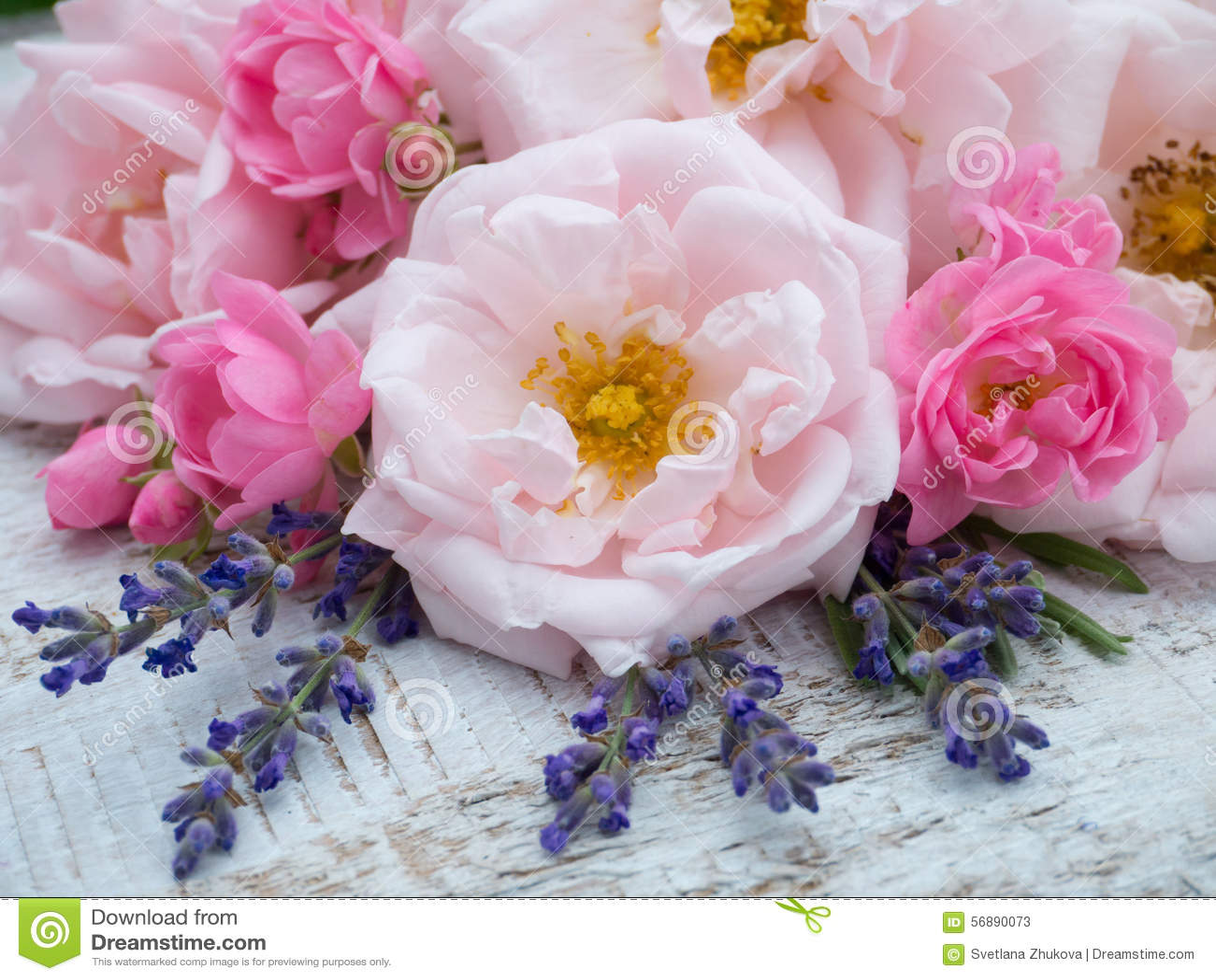 Розовые розы и букет лаванды на деревенской предпосылке