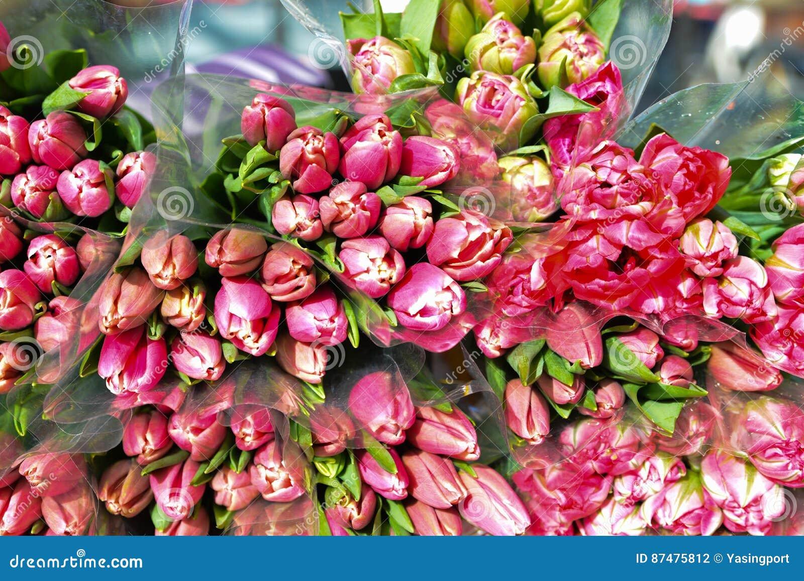 Розовые тюльпаны цветут для продажи