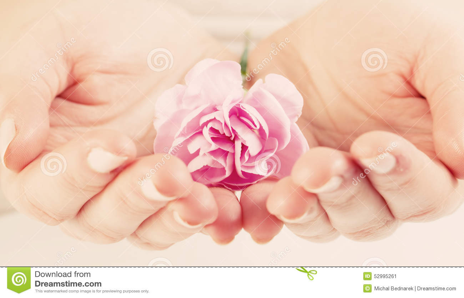 Фото цветы в руках женщины