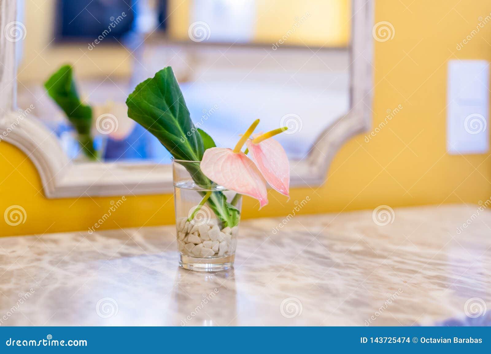 Розовый цветок и зеленые лист в небольшом прозрачном стекле