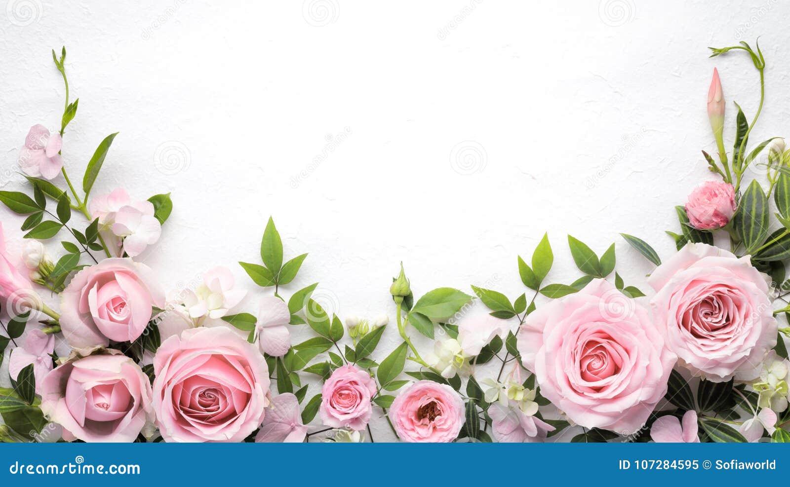 Розовый цветок с рамкой листьев