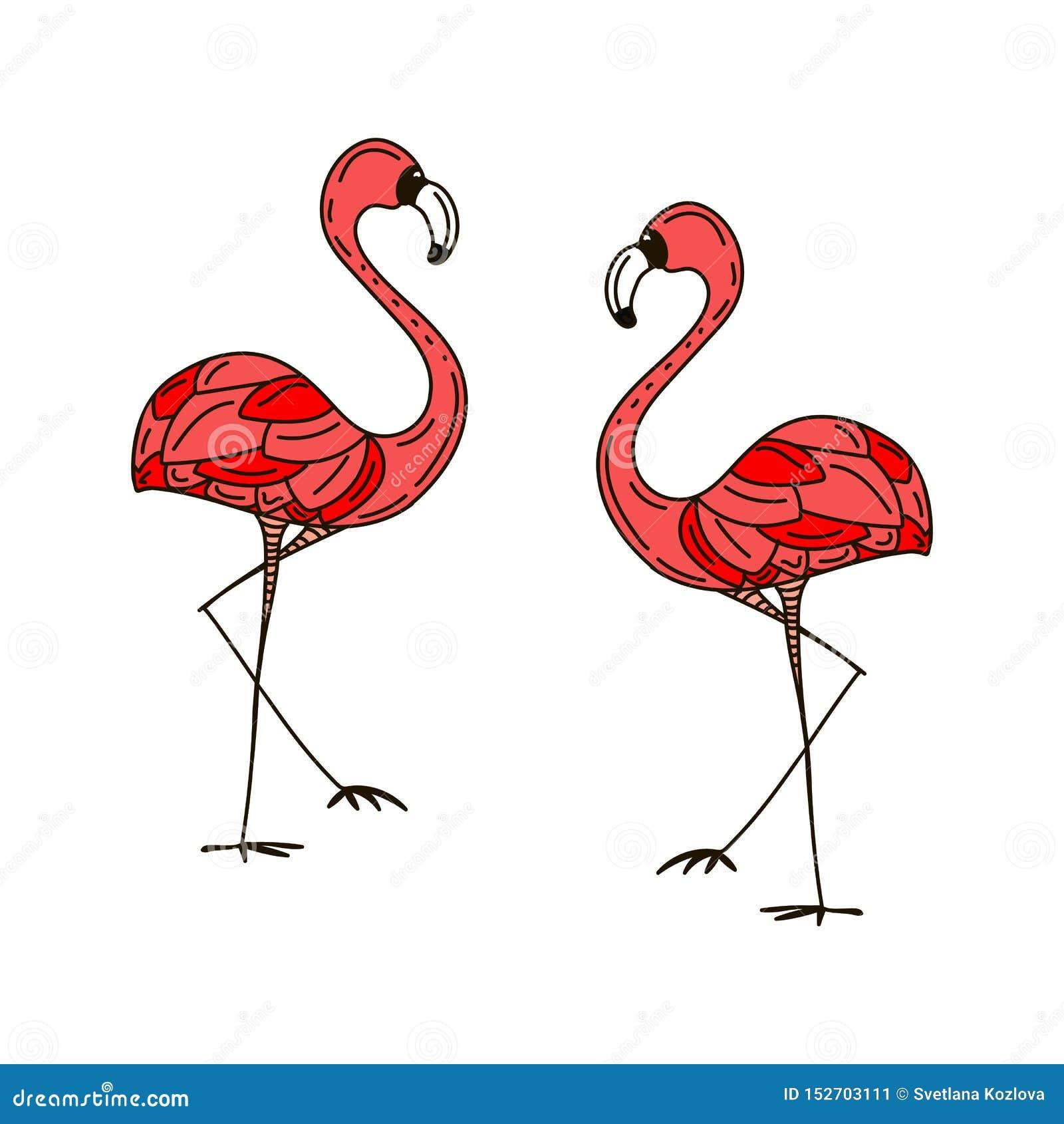 2 розовых фламинго в любов яркие характеры