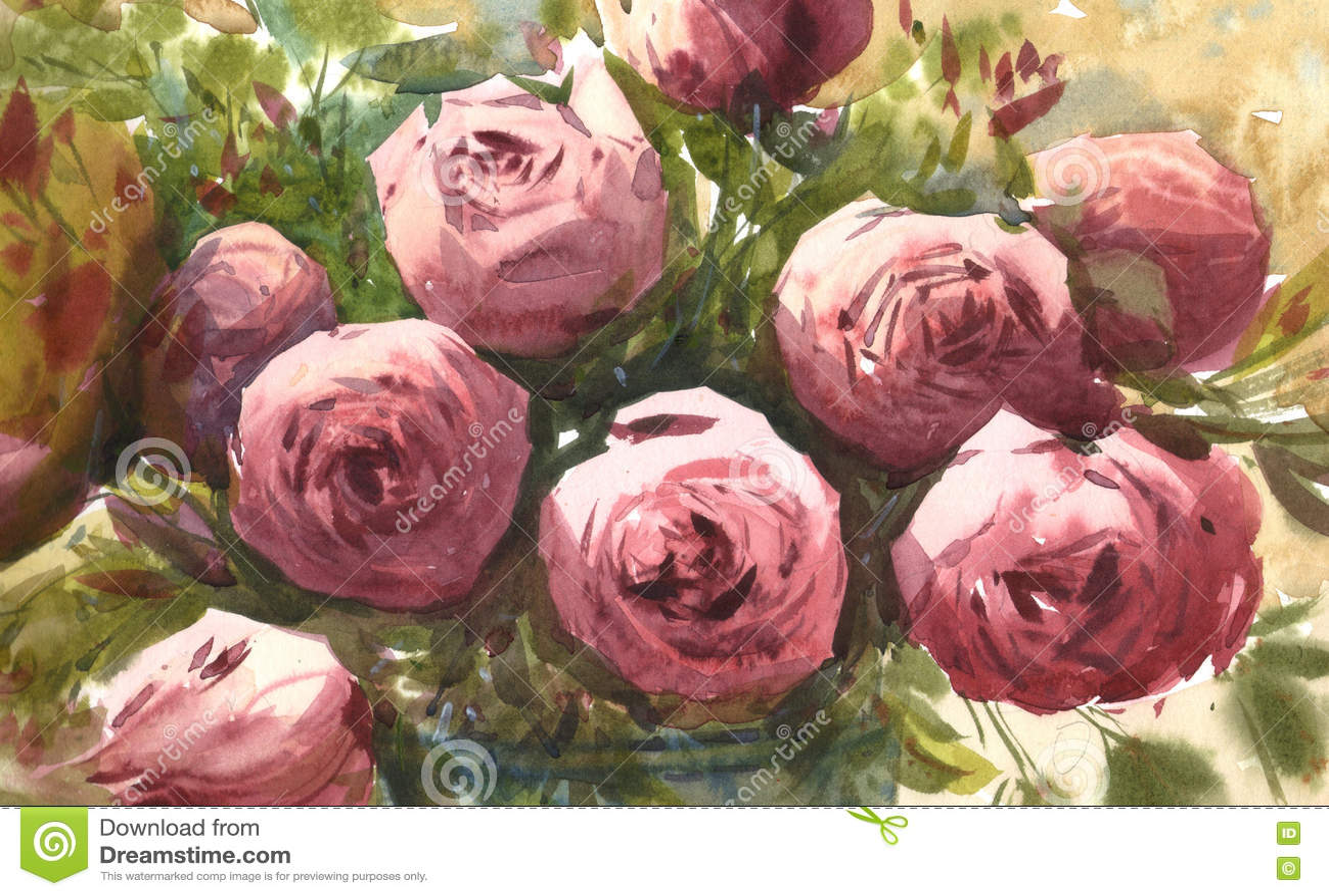 Download розы акварели розовые иллюстрация штока. иллюстрации насчитывающей пинк - 72289117