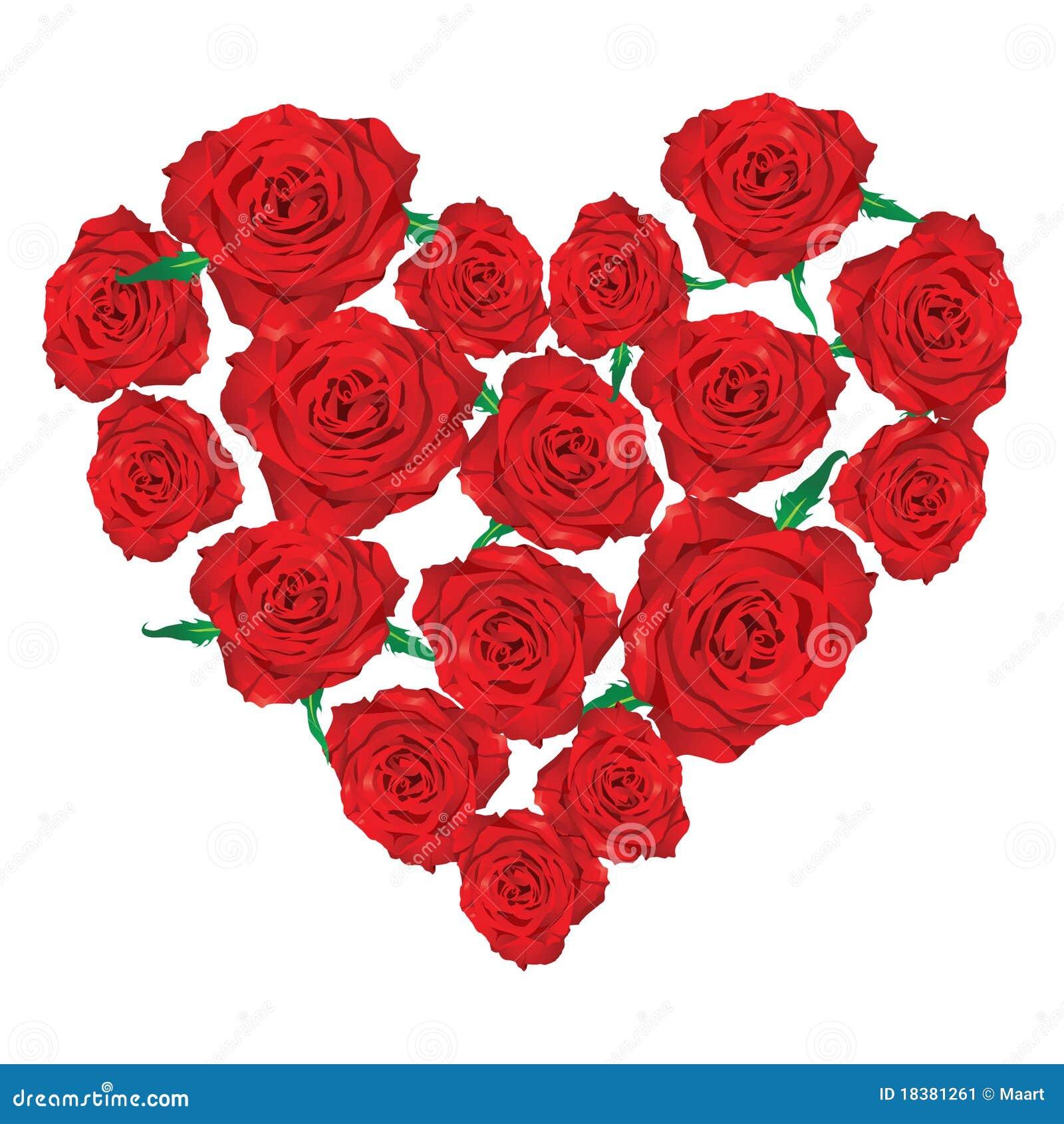 розы сердца