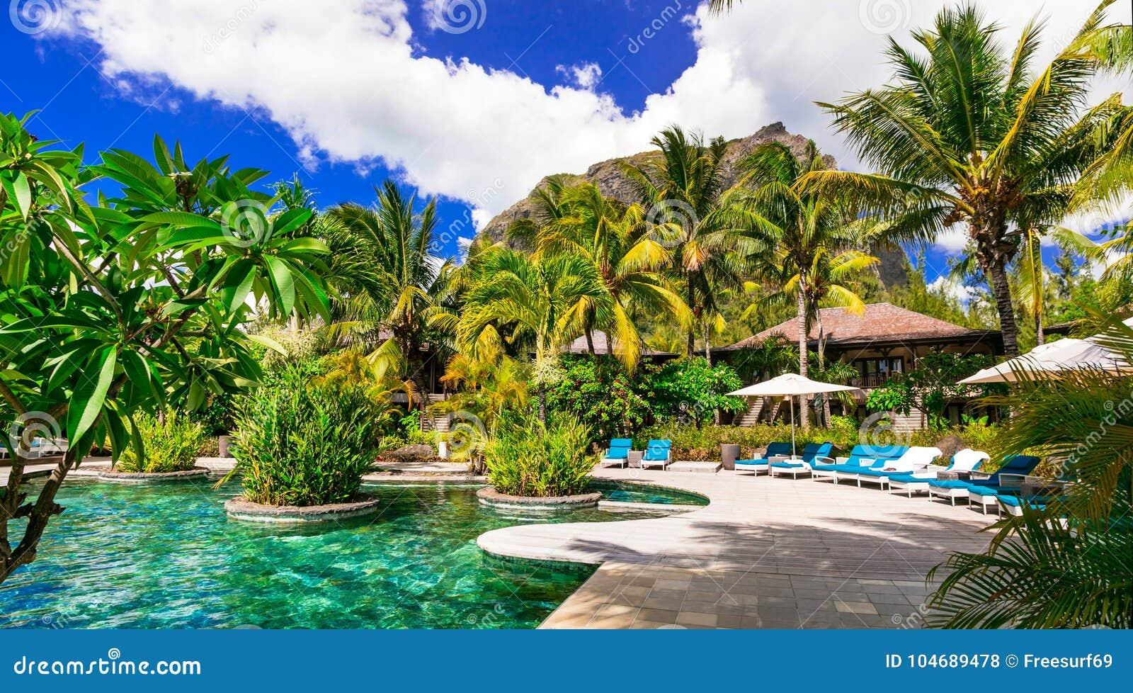 Роскошные тропические праздники Бассейн заплыва и расслабляющая территория курорта,