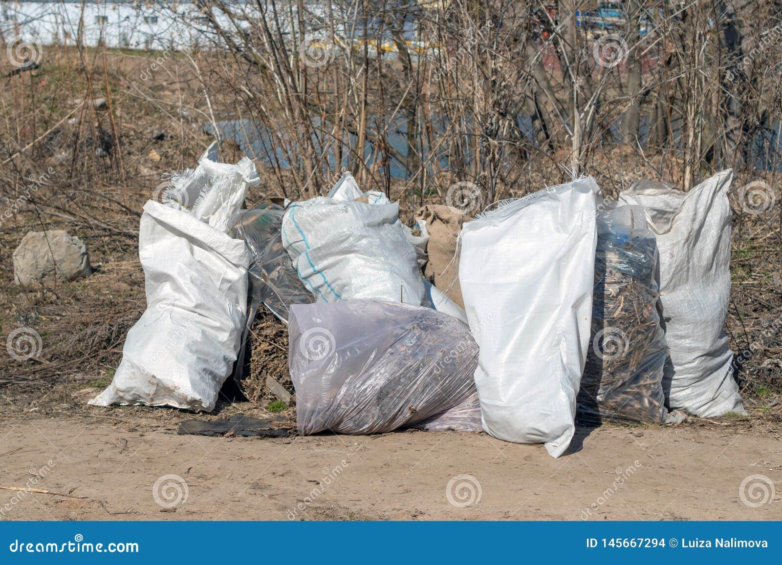 Россия, Казань - 20-ое апреля 2019: Сумки отброса на речном береге Сумки с листьями