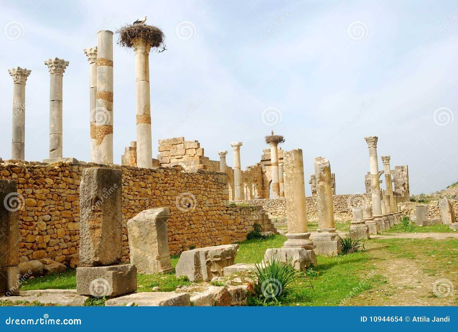 Руины капитолия, Volubilis, Марокко