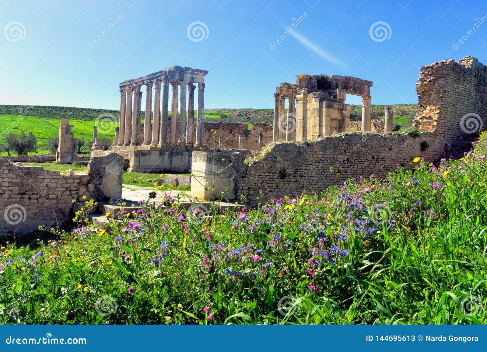 Руины театра в Dougga, Тунисе