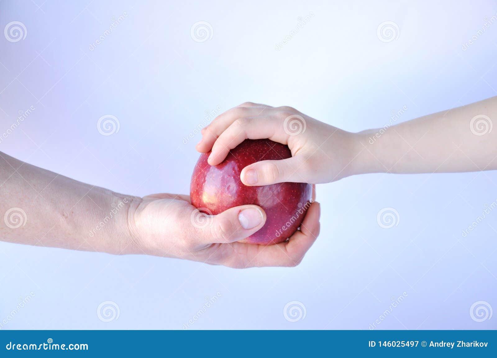 Рука дает красное яблоко другой руке