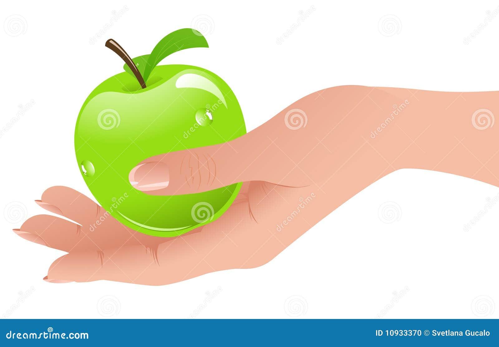 рука яблока