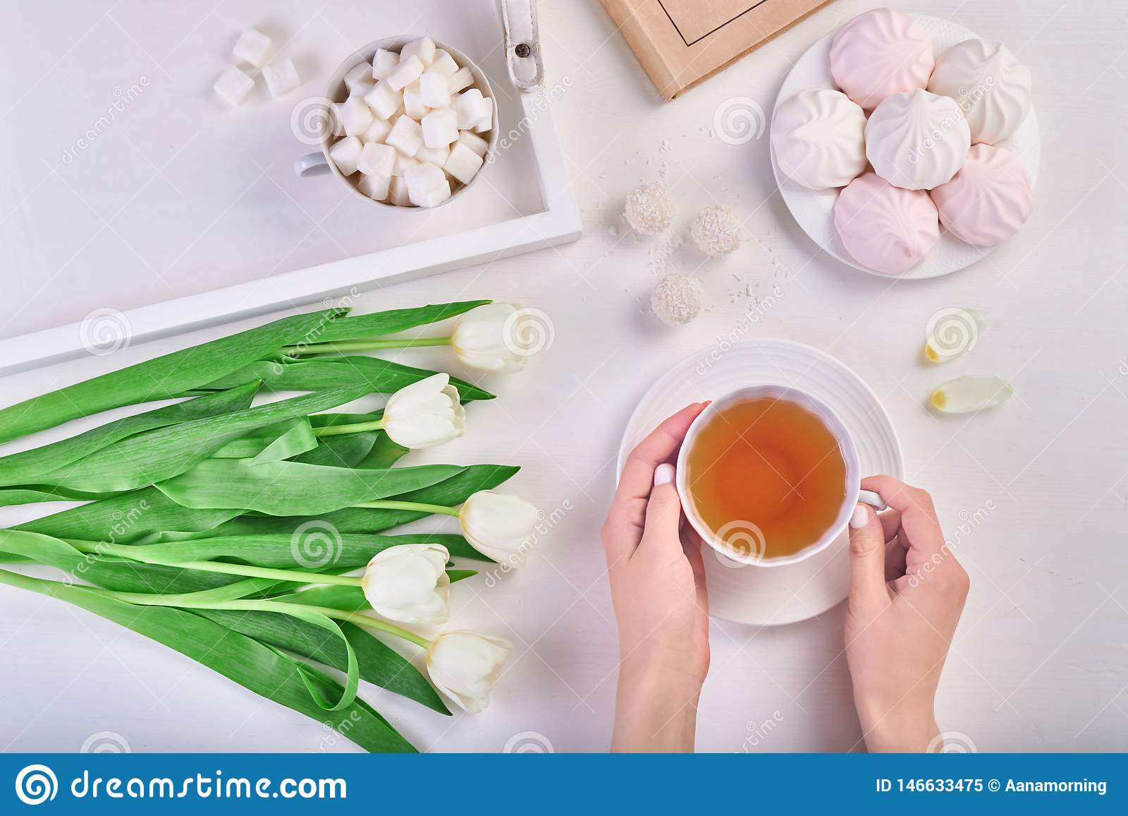 Руки женщины держа чашку чаю