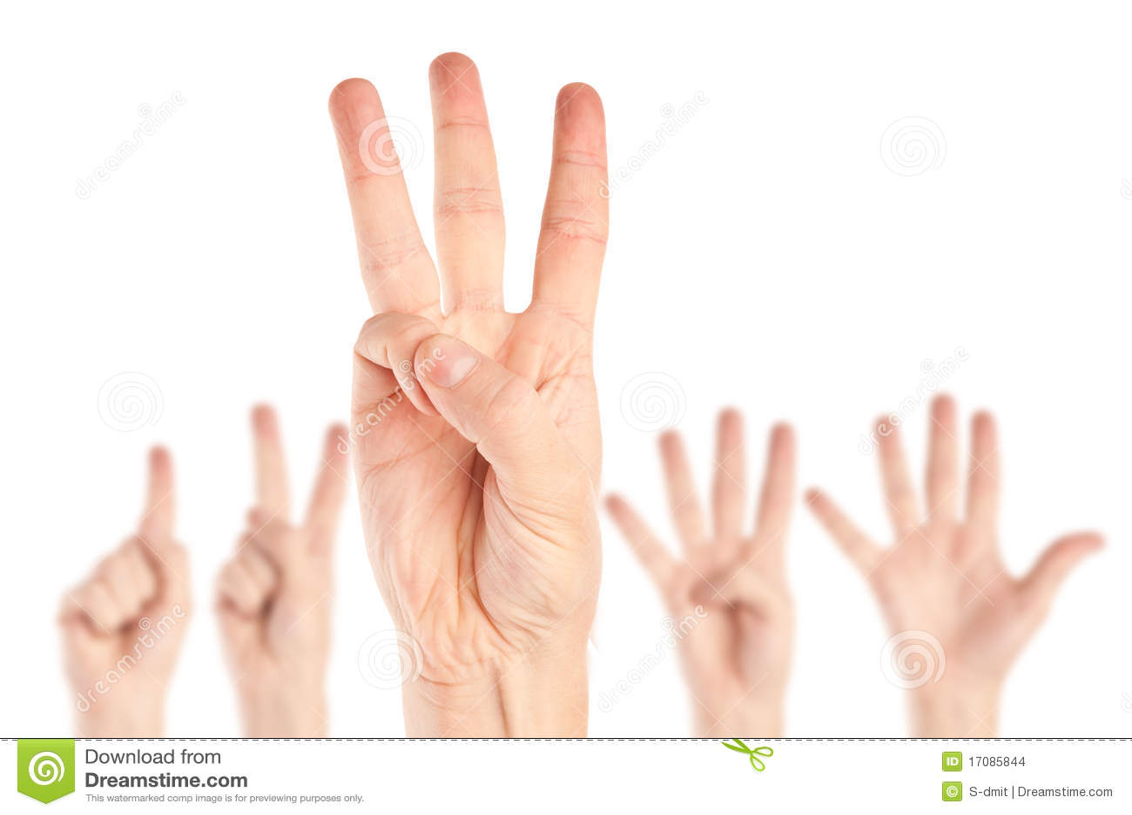 руки собрания
