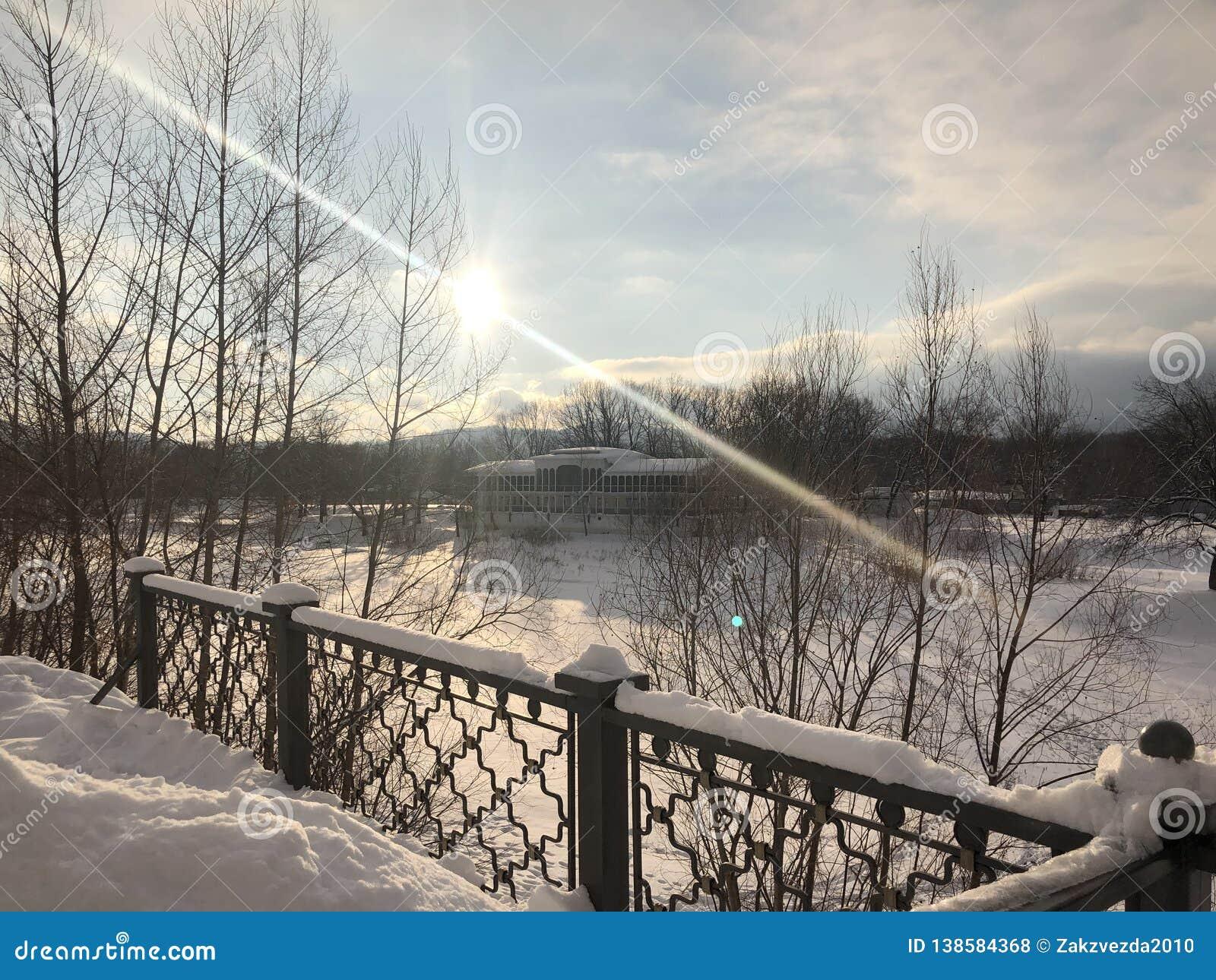 Русская пуща зимы