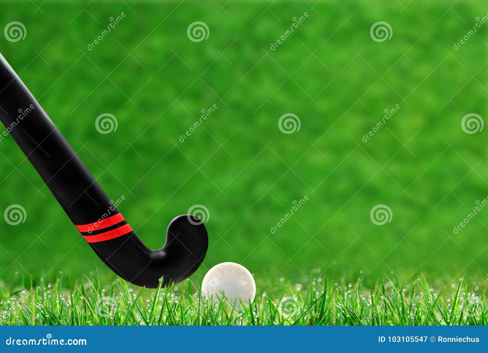Ручка и шарик хоккея на траве на траве с космосом экземпляра