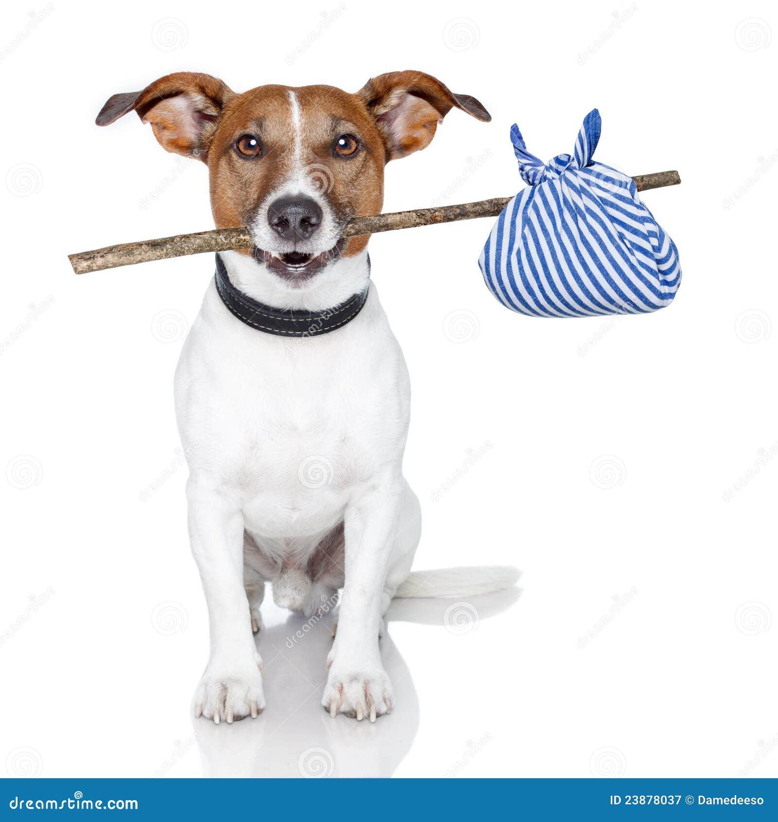 ручка собаки