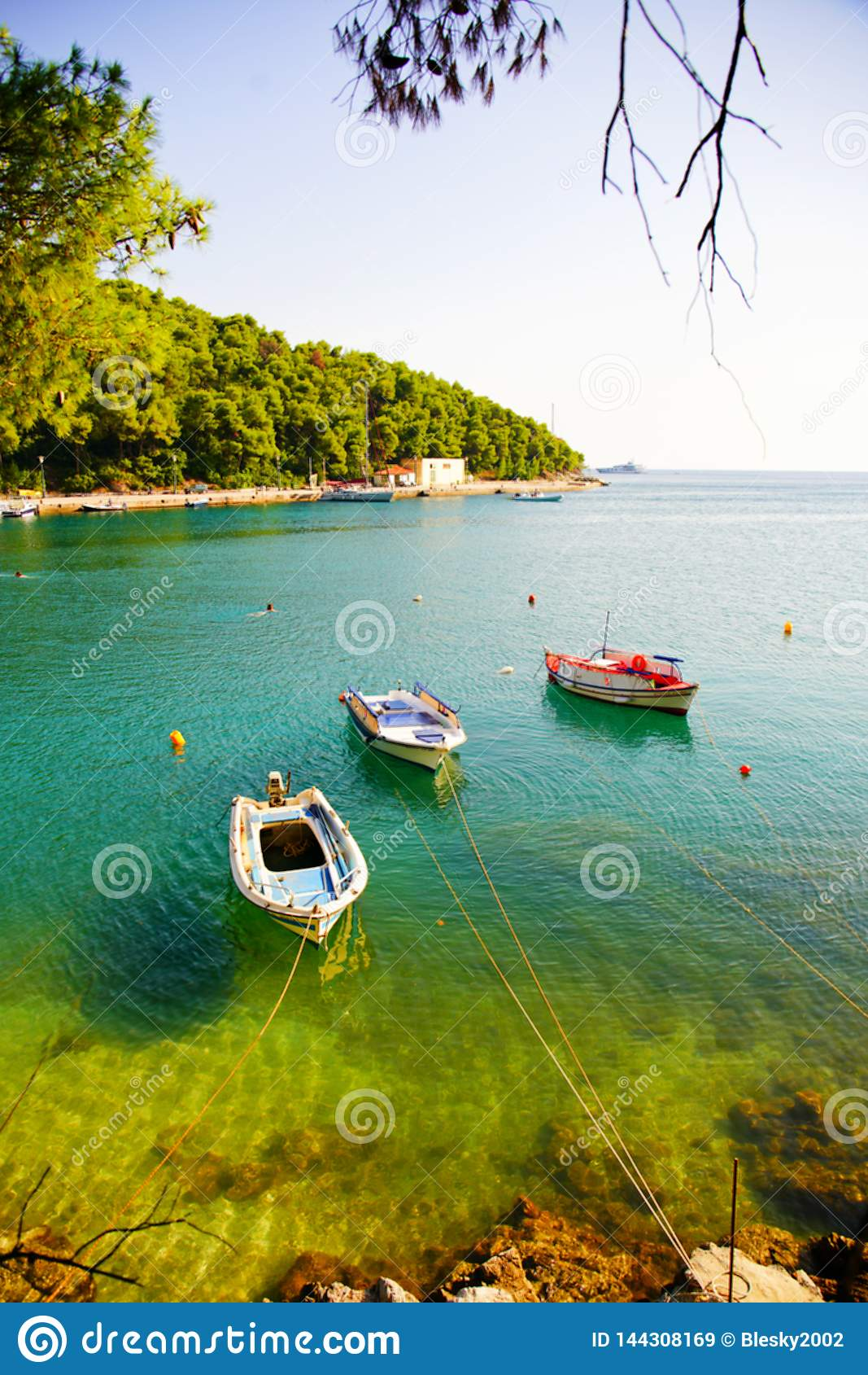 Рыбацкие лодки на заливе на солнечный день, Греции Agnontas
