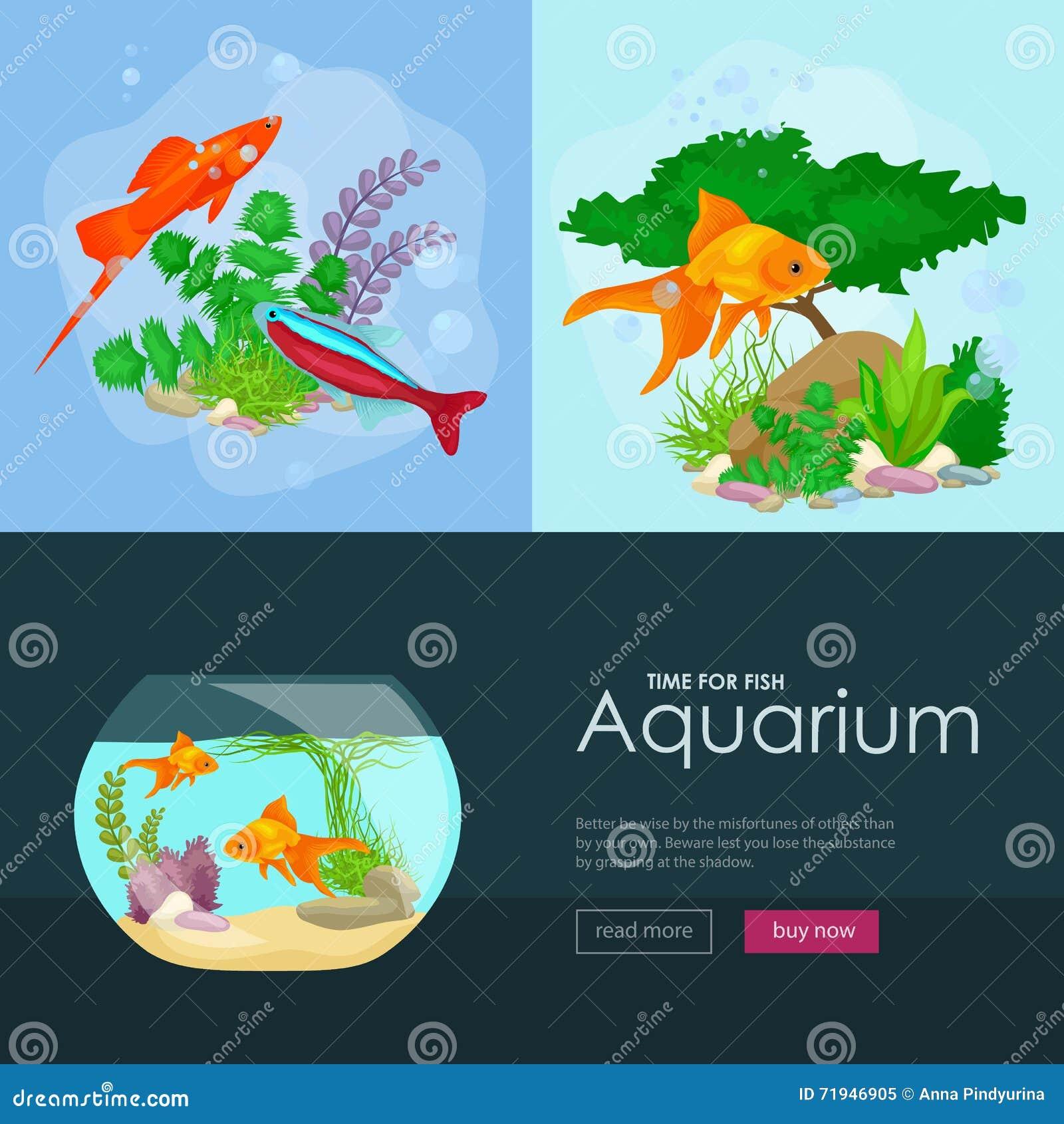Рыбы аквариума, морская водоросль подводная, план шаблона знамени с морским животным