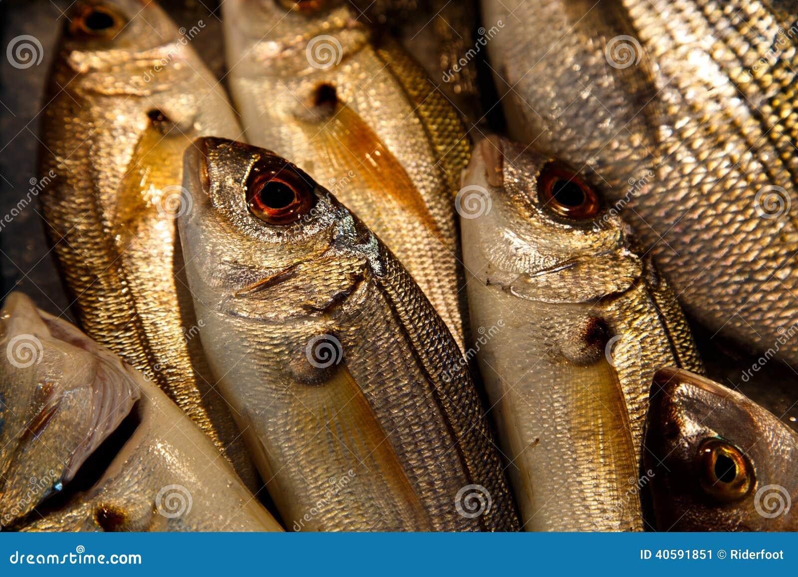 Рыбы, который нужно продать